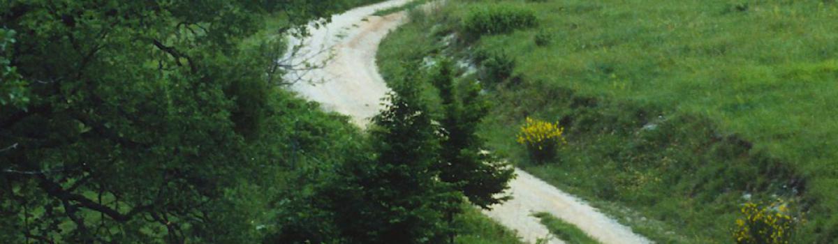 Escursionisti lungo il sentiero della Linea Gotica