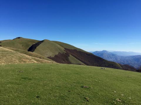 Immagine del panorama dalla cima di Monte Nerone
