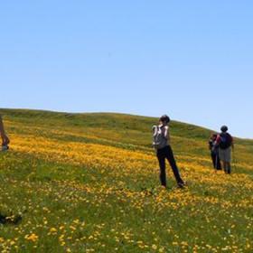 Immagine di escursionisti sul Monte Nerone